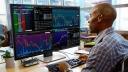 Display, Dell, Bildschirm, Monitor, LCD, Dell Monitor, Dell P4317Q