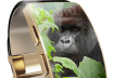 Corning, Gorilla Glas, SR+
