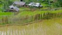 Vietnam, Dorf