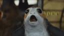 Wieder ein Projekt gestoppt: EA kriegt Star Wars einfach nicht gebacken