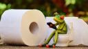 E-Commerce, Versand, Online-Handel, Drogerie, Toilettenpapier