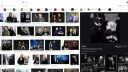 Google, Bilder, Bildersuche, Google Bildersuche, Google Bilder