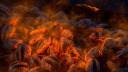 Windows 10, Wallpaper, Hintergrund, Windows 10 Wallpaper, Fire by Marc Schroeder