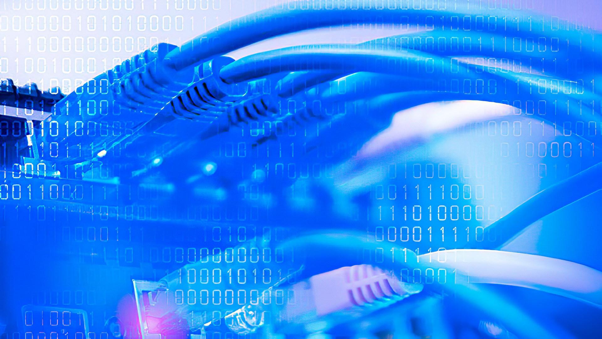 Internet, Daten, Router, Netzwerk, Switch, Kabel, Datenübertragung, Traffic, Gigabit, Telekommunikation, Ethernet, stecker, Binär, 720695, Patch-Feld, 1001, Netzwerkkabel