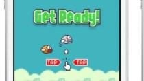 Fake Flappy Bird f�r Windows Phone - Original folgt