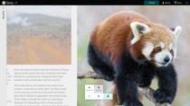 Office-Tool Sway für Windows 10 taucht kurz im Store auf