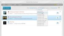 Freemake Video Downloader - Tool zum Download von Videos
