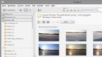 Picasa 3.9 - Gratis Bildverwaltungstool