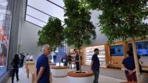 Aus Genius Bar wird Genius Grove: so sieht das neue Apple-Konzept aus