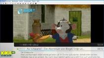 DVBViewer - Digitales TV und Radio am PC empfangen