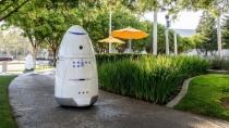 Betrunkener schlägt nachts einen 150-Kilo-Roboter nieder