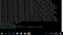 Ubuntu ab sofort im Windows Store - läuft aber nur mit Insider Builds