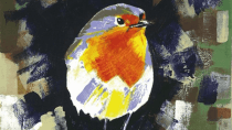 Problem mit Vögeln - Facebook blockt Bild eines Rotkehlchens