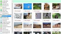 Tenorshare UltData - Datenrettung für iPhone-Nutzer