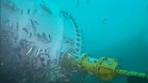 """""""Unterwasserwolke"""": Microsoft Cloud ist bereit für viele Server im Meer"""