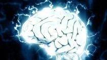 Erstmals haben drei vernetzte Gehirne miteinander Tetris gespielt