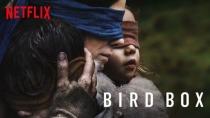 """Augen auf im Alltag! - Netflix warnt offiziell vor der """"Bird Box Challenge"""""""