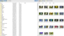 Q-Dir Download - Dateimanager mit vier Browser-Fenstern