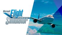 """Spieler testet den Flight Simulator """"live"""" im Flugzeug und ist verblüfft"""