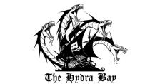 Pirate Bay baut sich ein unzensierbares P2P-Web