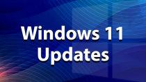 Patch-Day: Das erste Sicherheits-Update für Windows 11 ist da