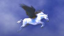 Pegasus Mail Download - Kostenloser E-Mail-Client