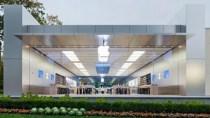 Diebe in blauen T-Shirts r�umen Apple Stores im Tagesbetrieb aus