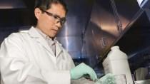 Schluss mit offener Kommunikation: US-Wissenschaft bekommt Maulkorb