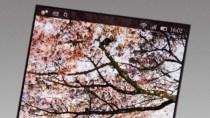 Pixelwahn 2014: 500-ppi-Displays werden Standard