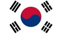 Südkoreaner bei Web-Shopping zum IE gezwungen