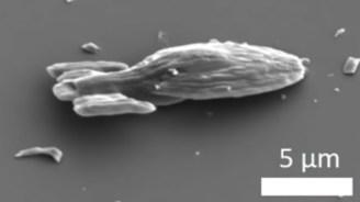 Voyager: 15 Mikrometer kleines Star Trek-Raumschiff bewegt sich selbst