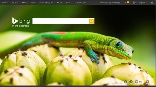 Bing, Suche, bing for schools