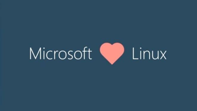 Microsoft, Linux, Betriebssysteme