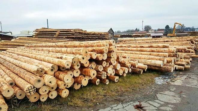 Deutsche Telekom, Holz, B�ume, Holzmasten