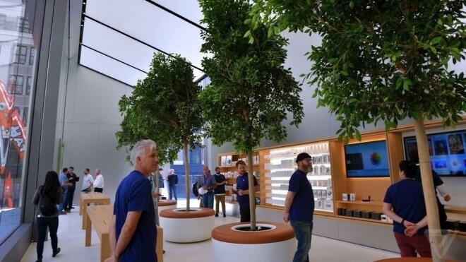 Apple Store, Apple Grove, Apple Retail