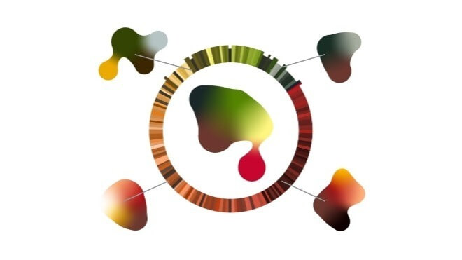 Adobe, Bildbearbeitung, Malprogramm, Playful Palette