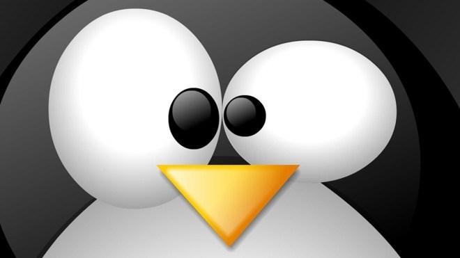 Logo, Linux, Maskottchen, Pinguin
