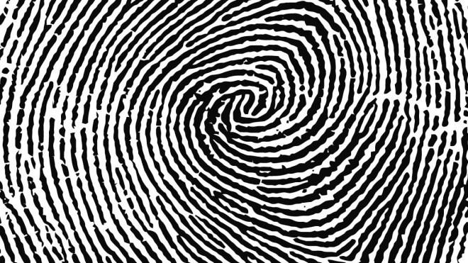 Fingerabdruck, Biometrie, Fingerprint